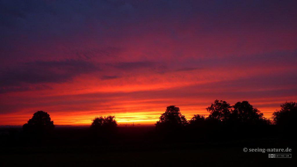 Sunset Intense