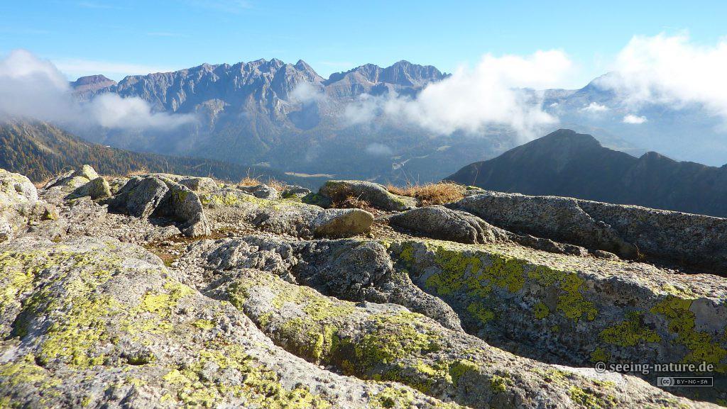 Living Rocks / Stene koje žive